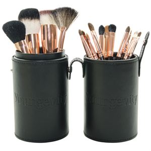 Picture of Mineral Makeup Brush Kit